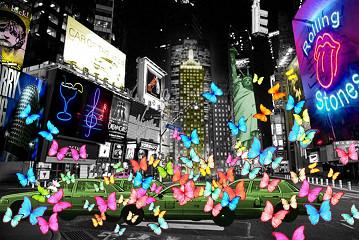 Butterflies / Plexiglas