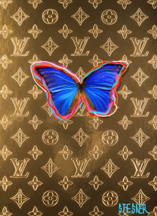LV Butterfly graffity / Limited edition / special layered plexi