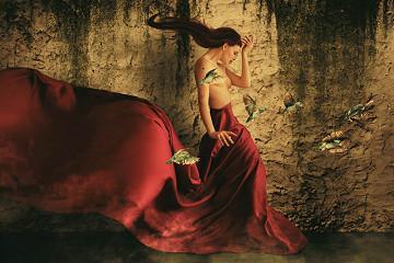 Lady red dress / plexiglas