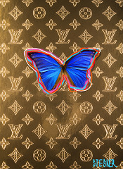 LV Butterfly graffity / limited edition / special layered plexiglas