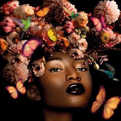 Black Beauty / foto op plexiglas