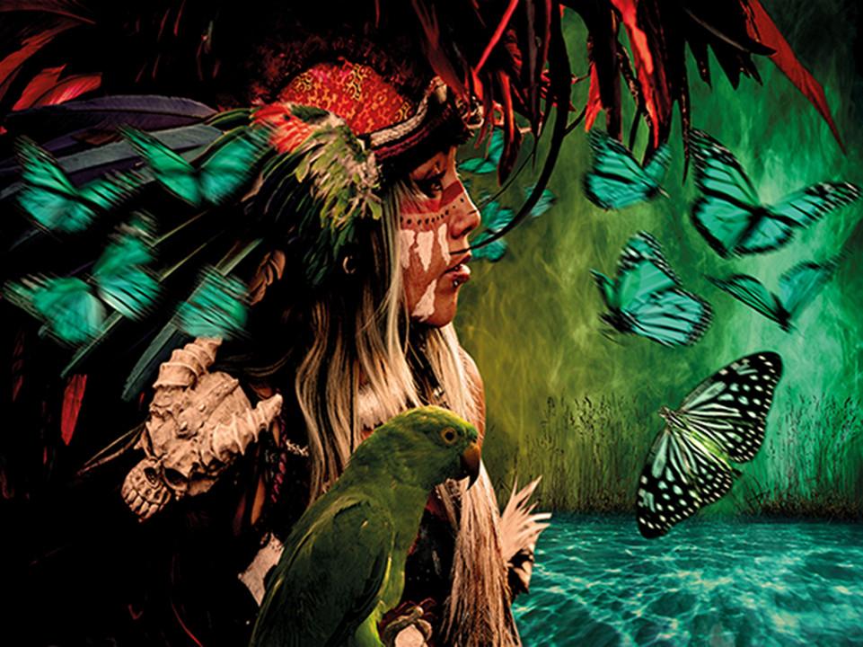 The lost tribe / foto op plexiglas