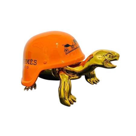 Turtle Hermes