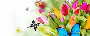 De lentekriebels zijn er weer!